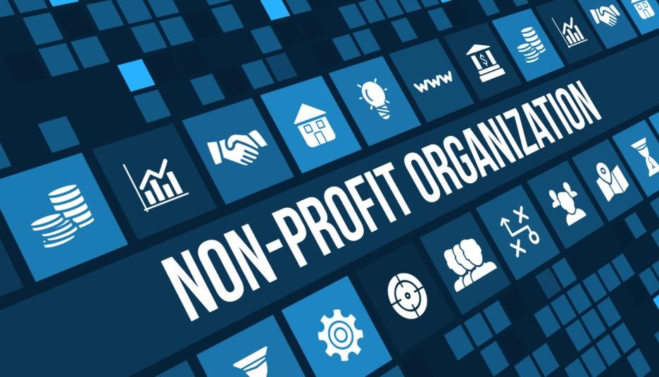 Income of Non-Profit Organizations